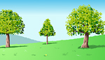 tree summer