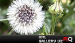 XML Gallery V2.0