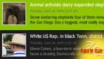 2009 Loop News Widget