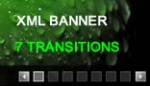Auto Play XML Image Gallery banner rotator