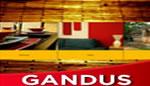 Gandus Portfolio Template